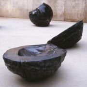 Detail of Black Seeds by John Greer