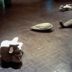 Flotsam, 1993 Installation by John Greer